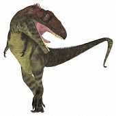 picture of giant lizard  - Mapusaurus was a giant carnivorous theropod dinosaur that lived during the Cretaceous Period of Argentina - JPG
