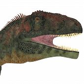 stock photo of giant lizard  - Mapusaurus was a giant carnivorous theropod dinosaur that lived during the Cretaceous Period of Argentina - JPG