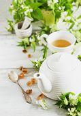 foto of nettle  - nettle tea - JPG