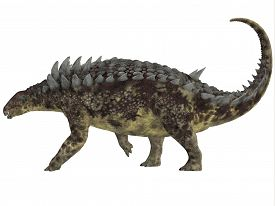 picture of herbivore  - Hungarosaurus was an ankylosaur herbivorous dinosaur that lived in Hungary during the Cretaceous Period - JPG
