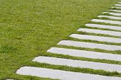 foto of stepping stones  - The diagonal path in the green grass - JPG