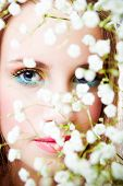 picture of beautiful face  - blue eyes woman face behind branch of little white flowers - JPG