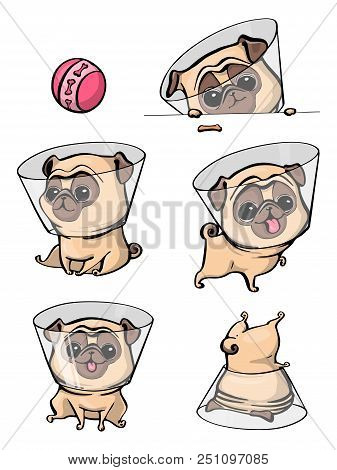 poster of Cartoon Character Pug Dog Poses. Cute Pet Dog In The Flat Style. Set Dogs. Cute Dog Of Pug Breed. Ve