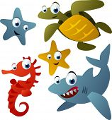foto of sea-turtles  - vector animals set 9 - JPG