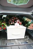 image of hearse  - White casket covered with floral arrangements in a hearse - JPG