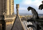 Chimeras (gargoyles) Of The Cathedral Of Notre Dame De Paris Overlooking Paris, France poster