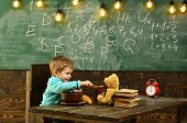 Lunch Time. Little Child Feed Teddy Bear During Lunch Time. Boy Enjoy Lunch Time With Toy Friend In  poster