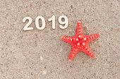 Starfish and seashells on the beach poster