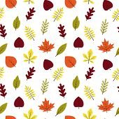 Seamless Pattern Autumn Different Leaves In Flat Style. Red, Green, Yellow, Orange Leaf On White Bac poster