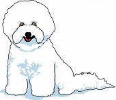 pic of bichon frise dog  - Bichon Frise Clipart of Dog Breed with White Coat - JPG