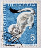a stamp printed in Switzerland shows Ermine Mustela Erminea short-tailed Weasel