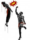 picture of manga  - two manga video games martial arts fighters fighting combat in silhouettes on white background - JPG