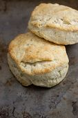 picture of biscuits  - Rustic handmade biscuits sit on a metal pan after coming out of the oven - JPG