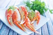 stock photo of cooked blue crab  - crab claws with fresh dill on white plate - JPG