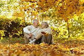 picture of elderly  - Beautiful caucasian elderly couple in the park in autumn - JPG