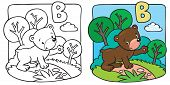 stock photo of teddy  - Coloring picture or Coloring book of little funny teddy bear at the lawn - JPG