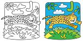 Постер, плакат: Little cheetah or jaguar coloring book Alphabet J