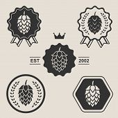 foto of hop-plant  - Hop craft beer sign symbol label element set - JPG