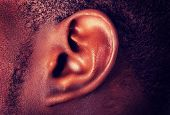 stock photo of hearing  - African male ear - JPG