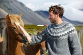 stock photo of petting  - Icelandic horses  - JPG
