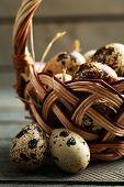 picture of bird egg  - Bird eggs in wicker basket on wooden background - JPG