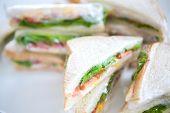 image of sandwich wrap  - Sandwich in plastic wrap for picnic - JPG