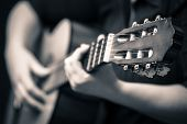 stock photo of guitar  - Classic guitar  - JPG