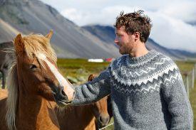 stock photo of iceland farm  - Icelandic horses  - JPG