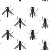 picture of mosquito  - seamless pattern black silhouettes of mosquitoes Isolated on white background - JPG