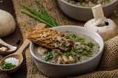 image of whole-grain  - Mushroom soup with chive and herbs bio healthy whole - JPG