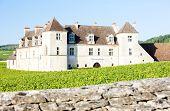 image of clos  - Clos Blanc De Vougeot Castle - JPG