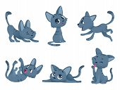 Little Kittens. Cats Domestic Cute And Funny Little Baby Animals Playing Smiling Vector Characters I poster