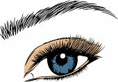 Eye On White Background. Eyes Art. Woman Eye. The Eye Logo. Eyes Art. Human Eye, Eye Close Up - Vect poster
