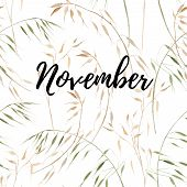 November Script Typography On Hand Drawn Watercolor Background With Oats On White. Illustration For  poster