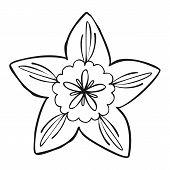 Botany Flower Icon. Simple Illustration Of Botany Flower Icon For Web Design Isolated On White Backg poster