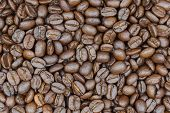 Brown Roasted Coffee Beans. Coffee Beans Background Or Coffee Beans Background. Closeup Shot Of Coff poster