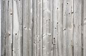 Discolored Unpainted Weathered Wooden Fence Texture. Natural Background. poster
