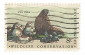 United States Stamp Wildlife Conservation ~ Fur Seal