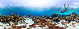 foto of under sea  - Underwater panorama of the young lady snorkeling over vivid coral reef in tropical sea - JPG
