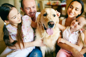 stock photo of cuddle  - A young friendly family of four cuddling their pet - JPG