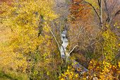 foto of stroll  - A morning stroll in the park during fall - JPG