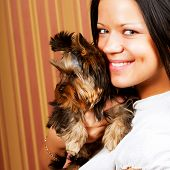 picture of yorkie  - Cute young girl with her Yorkie puppy - JPG