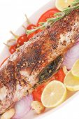 picture of sunfish  - savory - JPG