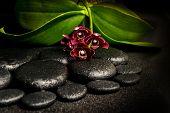 Постер, плакат: Spa Still Life Of Beautiful Deep Purple Orchid Flower Phalaenopsis And Zen Stones With Drops On Bla