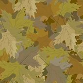foto of camouflage  - seamless background of autumn leaves camouflage vector illustration - JPG
