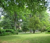 image of southeast  - Vivid green grass and trees of a southeast neighborhood park in the spring
