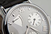 pic of wrist  - luxury watch swiss made - JPG