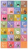 stock photo of quokka  - A cute and colorful animal alphabet for educational purposes and fun learning - JPG