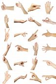 image of nonverbal  - Collage of  hands showing different gestures - JPG