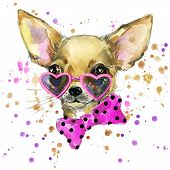 dog fashion T-shirt graphics. dog illustration with splash watercolor textured  background. unusual poster